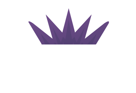 VAINER | ויינר הפקות